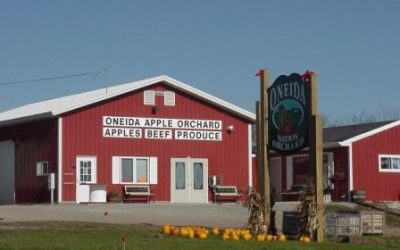 Oneida Big Apple Fest: Developing An Agricultural Festival