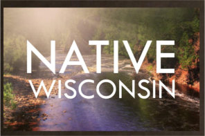 AIANTA Forms Partnership with NATOW, Tribal Nations of Wisconsin