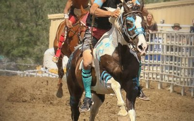 The Excitement of Indian Relay Horse Racing